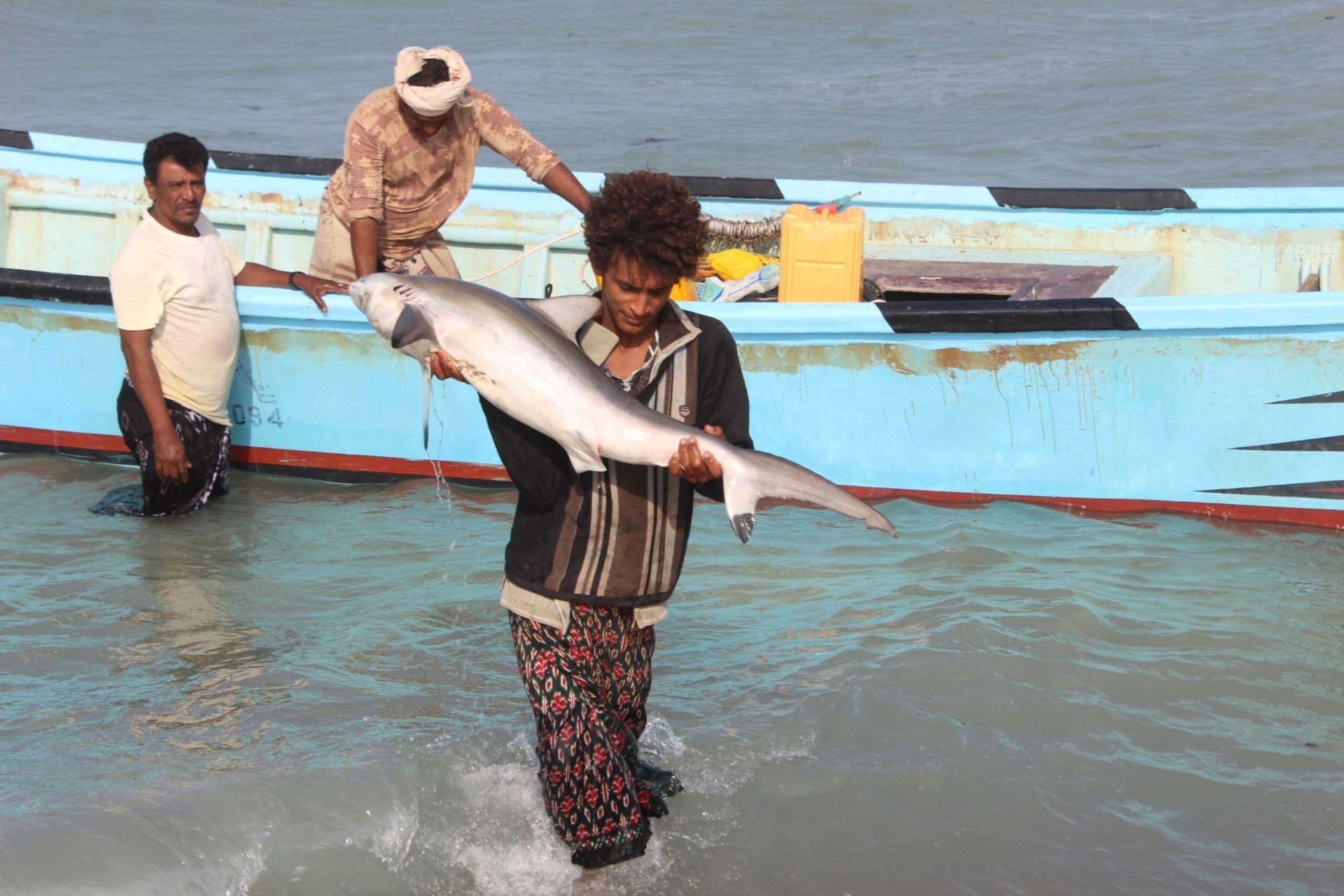 A Yemeni fisherman carries a caught fish back to shore in the Khokha district of the western province of Hodeidah (AFP)