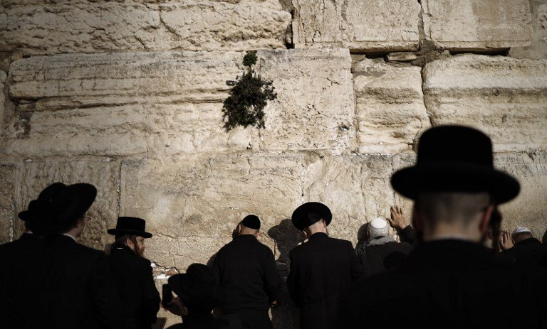 Ultra-Orthodox Jews pray at the Western Wall in Jerusalem on 21 January (AFP)