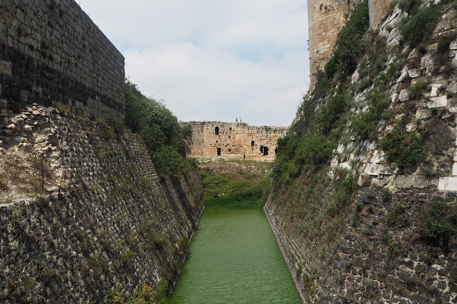 A view of the original medieval moat, which is populated by a community of water snakes (Tom Westcott/MEE)