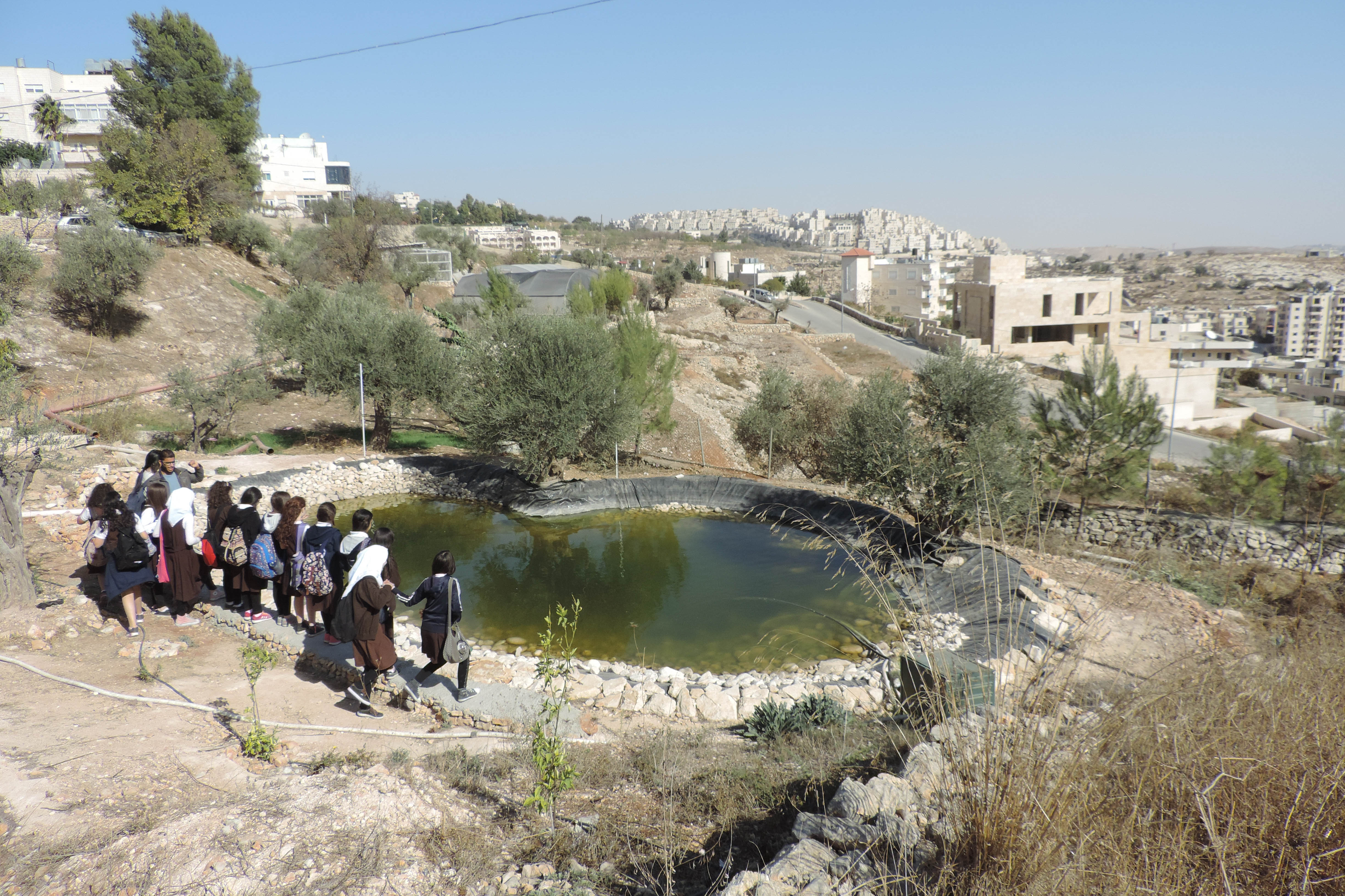 Schoolgirls visiting the museum stand by the pond in the garden overlooking the Israeli settlement of Har Homa (MEE/Miriam Deprez)
