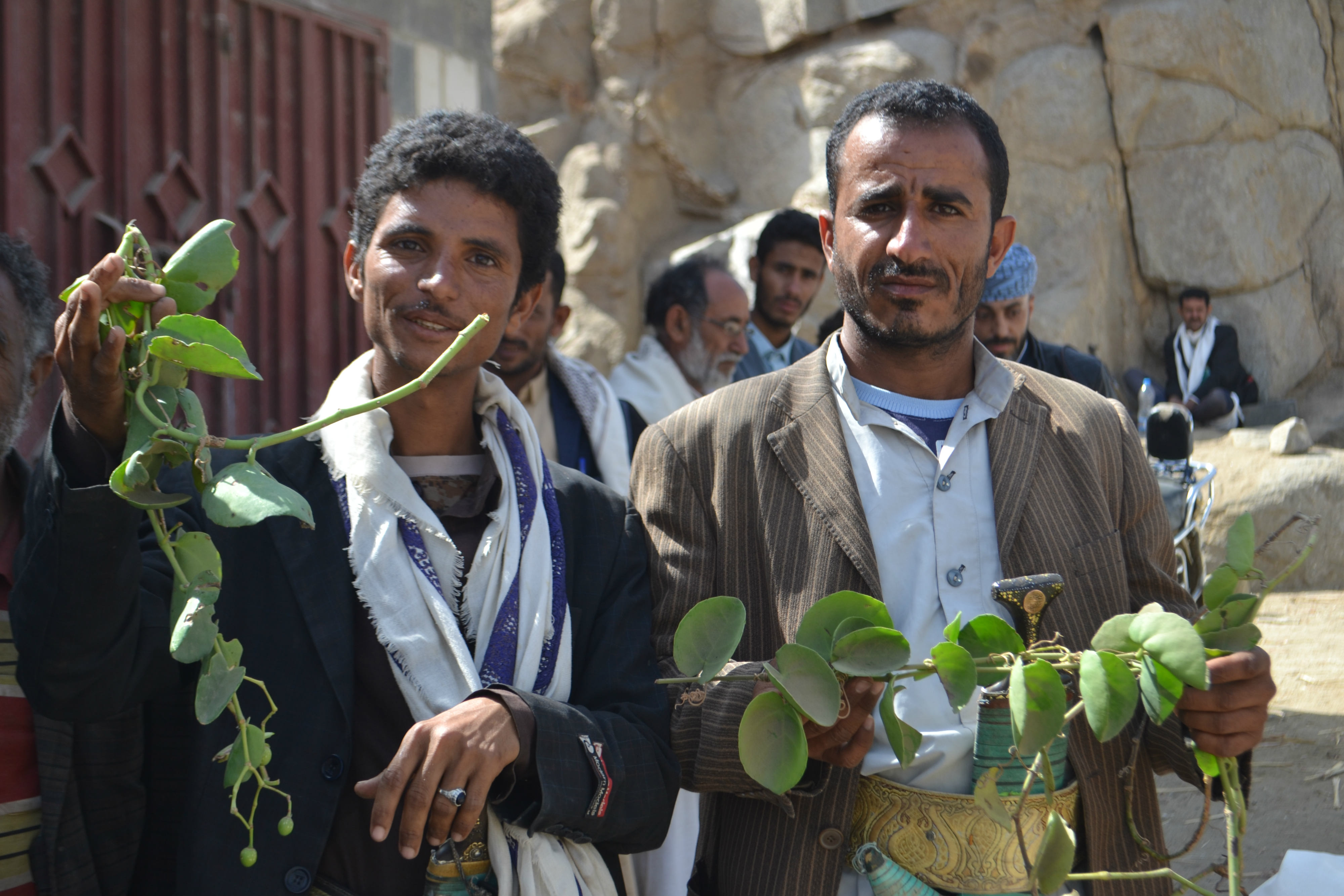 Khalid Abdullah, left, shows the leaves of the Halas plant which are boiled for eating (MEE)