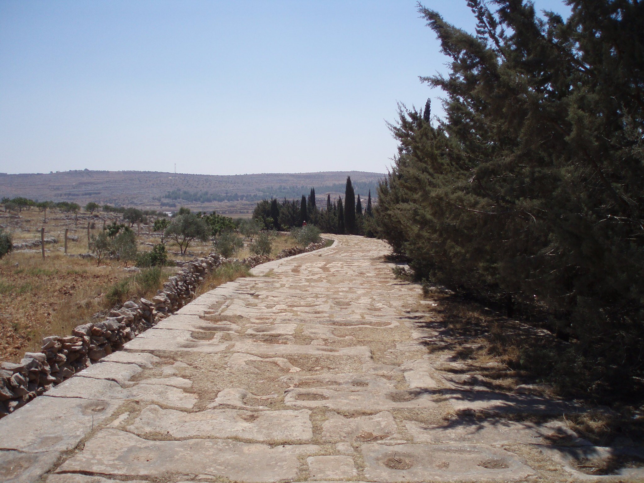 A stretch of paved Roman road still runs beside the main Aleppo-Turkey road, a testament to historic trade routes (Photo by: Diana Darke)