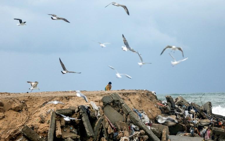 Gaza's superbug epidemic: Bacteria without borders