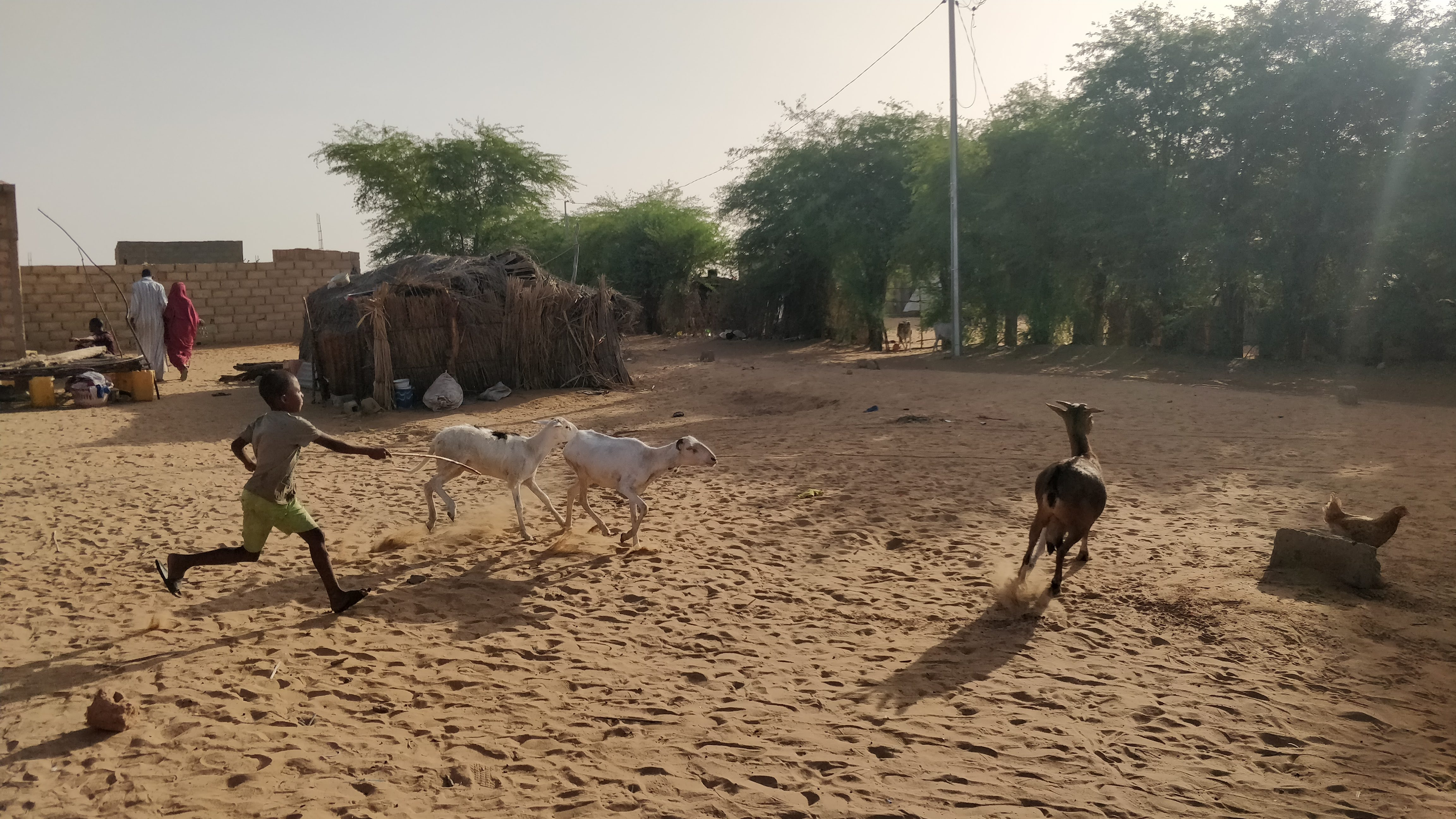 There are over 14,000 registered refugees living in camps in the north of Senegal (MEE/Amandla Thomas-Johnson)