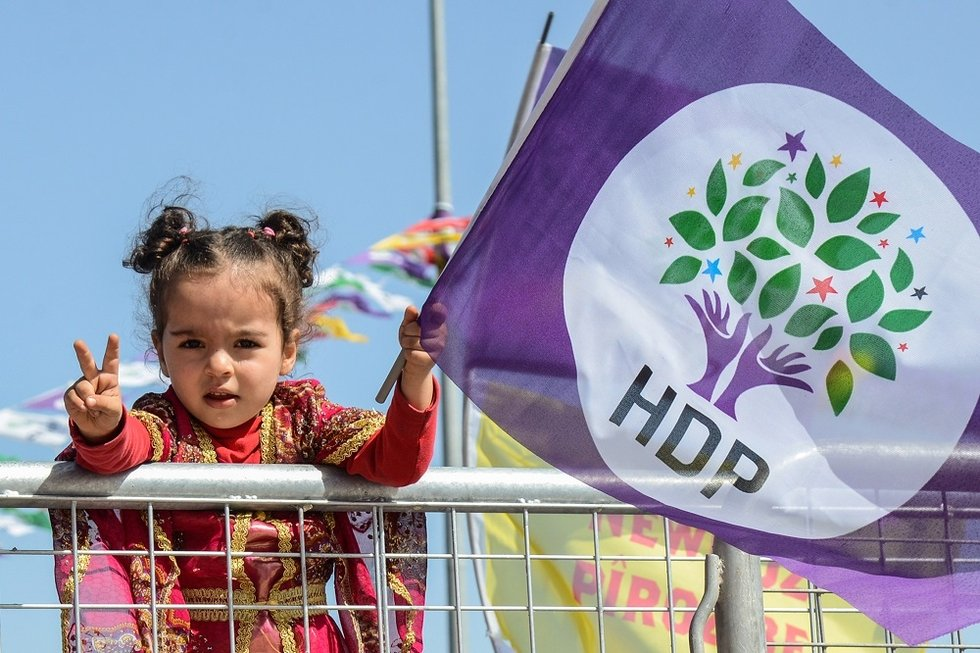 child with HDP flag