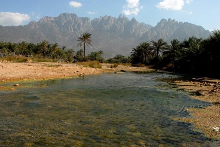 UAE says its military presence on Yemen's Socotra island 'distorted'