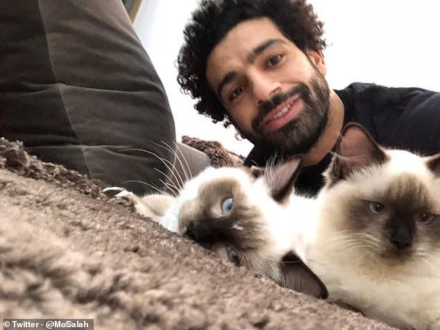 'This will not happen': Mo Salah decries Egyptian plan to export cats and dogs