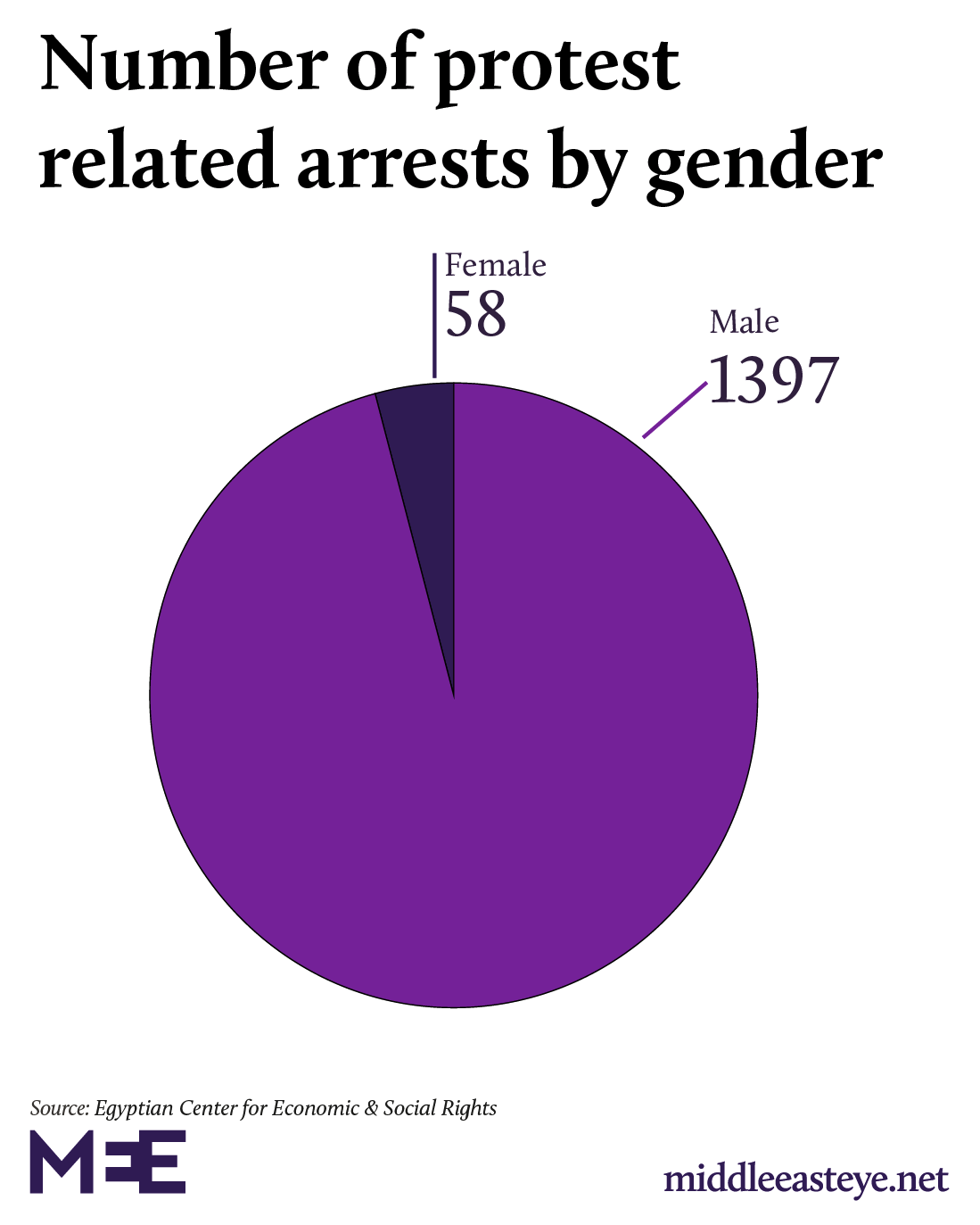 Gender of protest related arrests egypt 2019