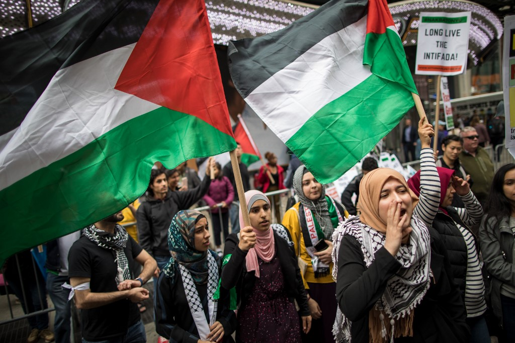 People rally in support of Palestinian rights in New York in 2018 (AFP)