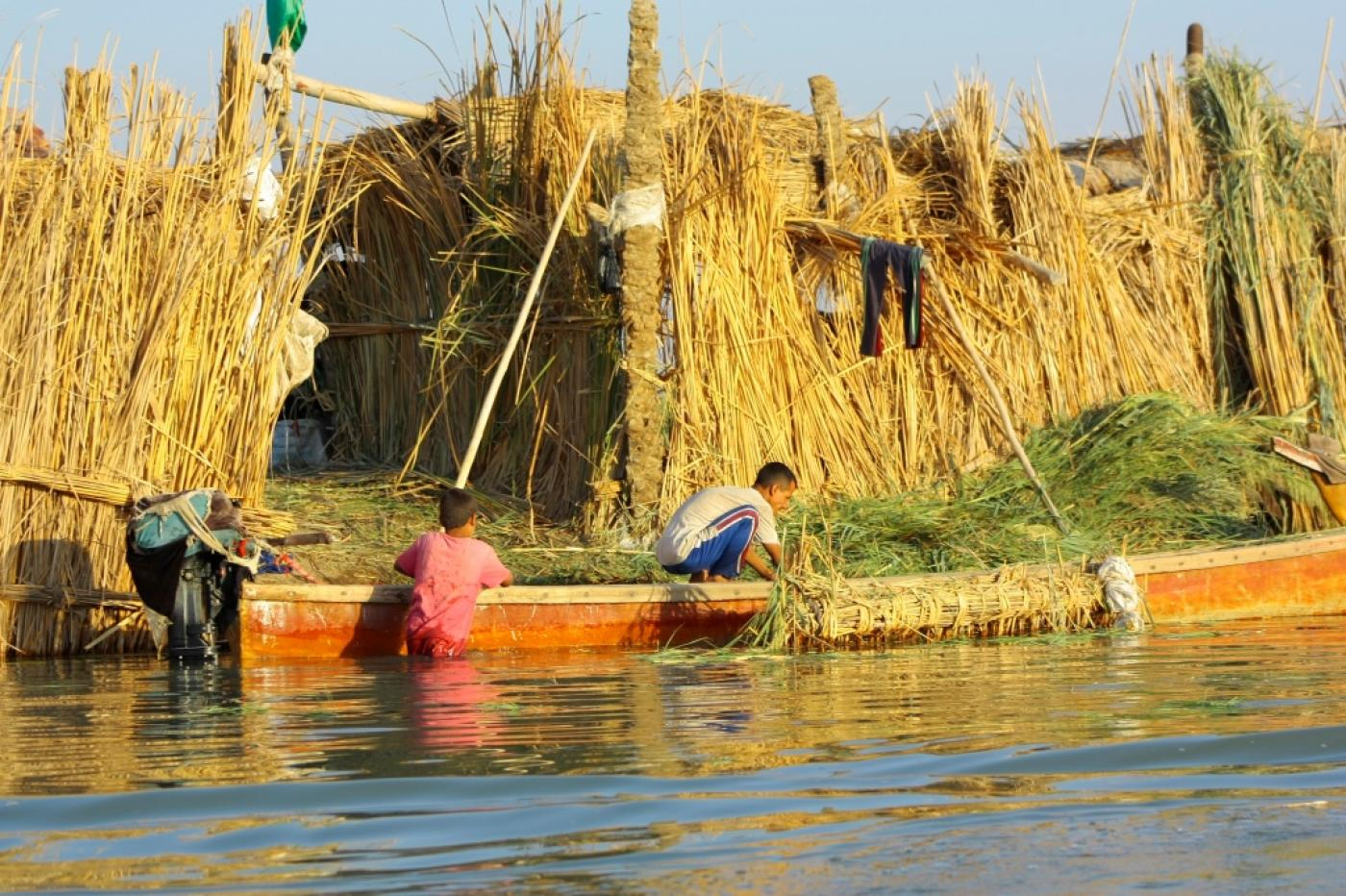 Can Iraq beat the drought and become the breadbasket of the