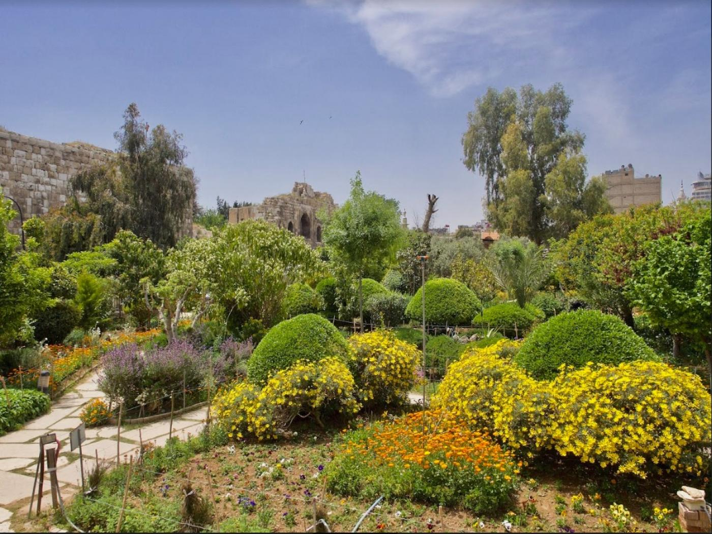 The gardens of Damascus: Can Syrians reconnect with nature