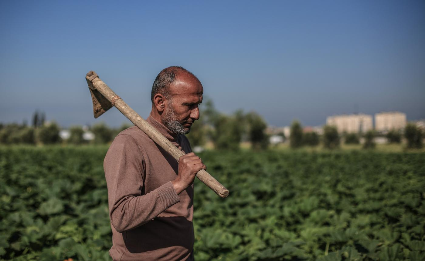 Gaza farmer working on land MEE