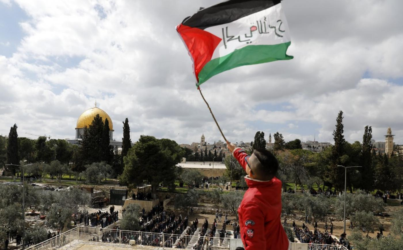 US envoy says Palestine-Israel peace plan does not include