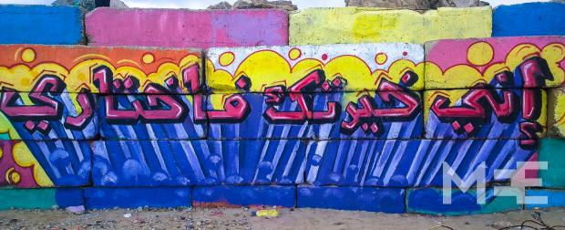Graffiti was welcomed by the Tamer Institute (MEE/Creede Newton)