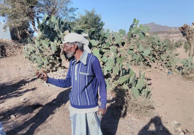Going back to the well: Yemens water crisis sees a revival of old methods