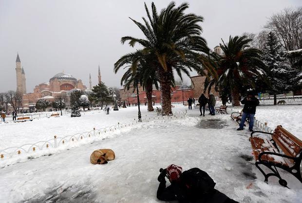 New snowfalls close Bosphorus, cancel Istanbul flights